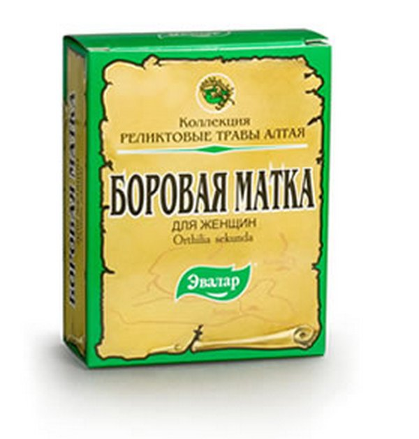 Borovaya Matka. 100% Herb Orthilia Secunda, Infertility, Mastitis, Endometriosis (buy online)